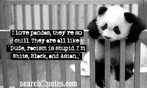 love pandas, they're so chill. They are all like 'Dude, racism is ...