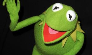 Kermit-the-Frog-011.jpg