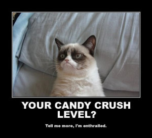 Grumpy Cat Quotes Frozen Grumpy Cat Quotes Frozen