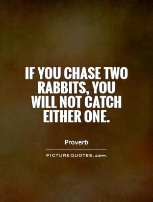 Rabbit Quotes