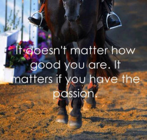 horse quotes | via Tumblr