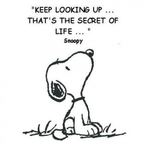 ... looking up ... that's the secret of life. Snoopy #CharlesSchulz #quote