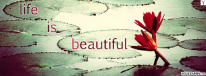 ... quotes and sayings - life is beautiful / water lily flower pictures