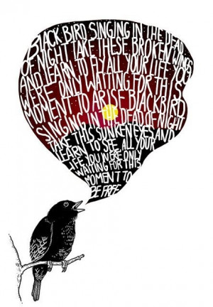 The Beatles Black Bird