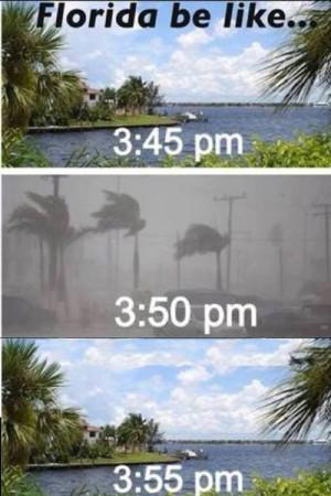florida-weather.jpg