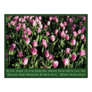 Tulips With Quotes And Sayings Posters & Prints