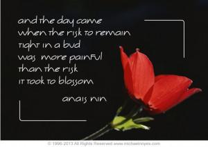 10. Anais Nin Quote 2