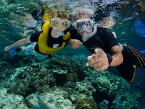 Jackfish is one of the best snorkelling site in Ras Mohamed National ...