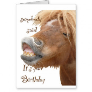 Funny Horse Birthday Cards & More