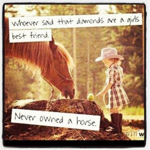 Horse Quotes for Instagram