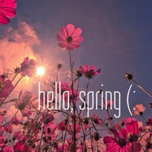 happy first day of spring everyone hope you re all enjoying this ...