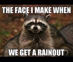 Memes, Evil Genius, Funny Animal Pictures, Funny Animal Pics, Funny ...