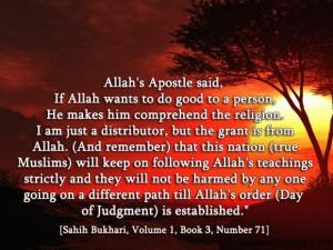 Sahih bukhari volume 1 book 3 number 71