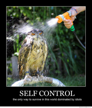 ... way to survive in this world dominated by idiots – demotivational