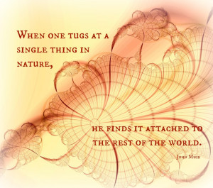When one tugs at a single thing in nature john muir