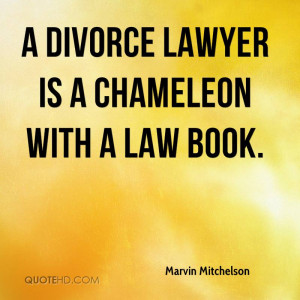 marvin-mitchelson-lawyer-a-divorce-lawyer-is-a-chameleon-with-a-law ...