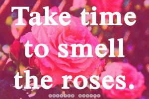 The 50 Best Quotes About Flowers - Curated Quotes