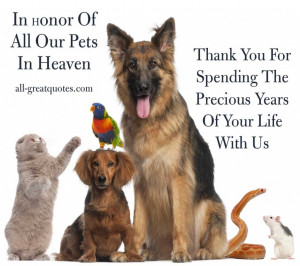 Memorial Quotes For Death Pets