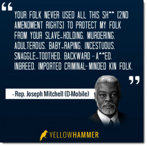 ... ranting email against other lawmakers who support the Second Amendment