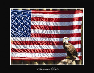 American Pride Bald Eagle with Flag