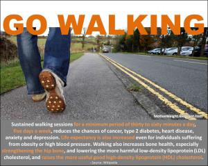 Go Walking