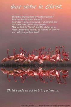 dear sister in christ more dear sisters women of faith women ministry ...