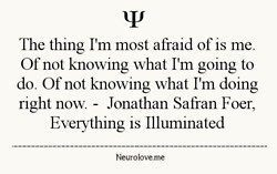 quote quotes Jonathan Safran Foer Everything is Illuminated
