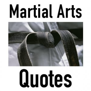 martial arts quotes martialquotes tweets 361 following 6532 followers ...
