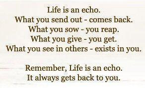 Inspirational Quotes life is an echo it always gets back to you