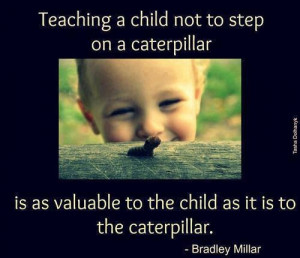 child not to step on a caterpillar is as valuable to the child as it ...
