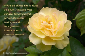 When we choose not to focus on what is missing from our lives but are ...