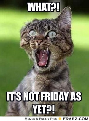 Its Friday Meme Funny Pictures And Lol Picture