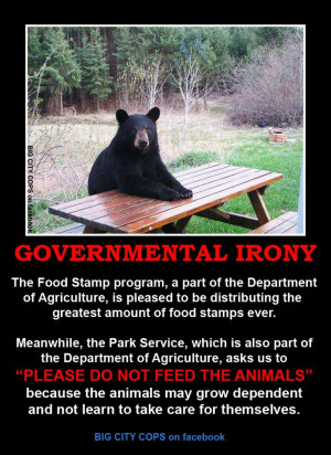 At the time it seemed like the ultimate example of governmental irony ...