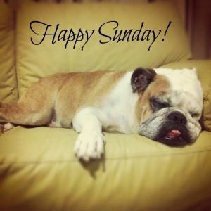 66378-Happy-Sunday.jpg#Happy%20Sunday%201936x1936