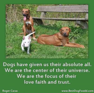 dogs-love-quotes and Dog Sayings