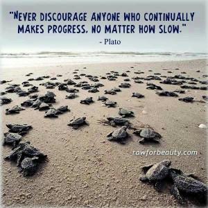 Slow progress is still progress..