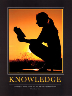Knowledge Motivational Posters