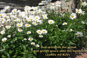 James 4.6 KJV Bible Verse