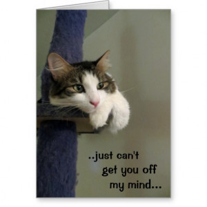 Can't get you off my mind card, with cat