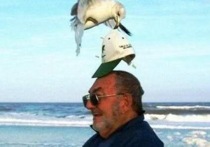 Funny man and seagull moment   funny-pics.co