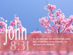 """Jesus said, """"If you hold to my teaching, you are really my disciples ..."""