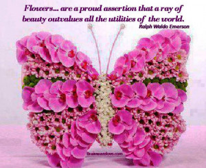Daily Inspirational Quotes Sayings Flowers Bloom Your World