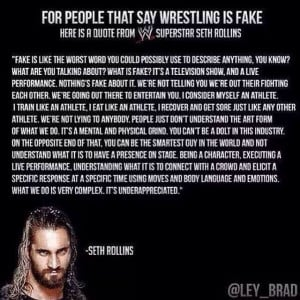 WWE Seth Rollins (of The Shield) Quote