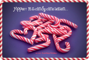Yippee! It's Candy Cane Season - see more Holiday graphics http ...