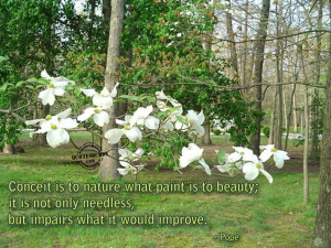 ... Quotes: Beauty Quotes About Nature In Our Beautiful Earth With Picture