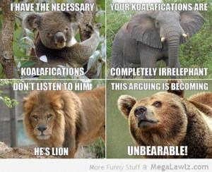 funny-kolala-elephant-lion-bear-pictures