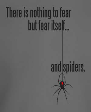 There is nothing to fear but fear itself.... and spiders.