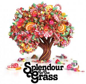Splendour In The Grass is moving back to Belongil Fields in Byron Bay