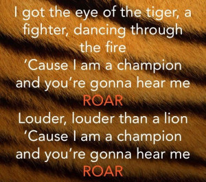 Roar-Katy Perry i went from being zero to my own hero..... i stood up ...