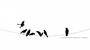 black and white minimalistic quotes power lines crows ravens wallpaper ...